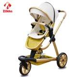 Alti passeggiatore + sede del bambino della rotella di paesaggio tre
