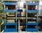 Plastikbildenausschnitt, der in der Zeile Thermoforming Maschine stapelt