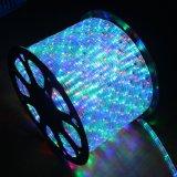 建物の装飾LEDネオンロープの薄い色変更ロープライト