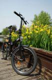 Trend-Setting Entwurfs-faltbares u. bewegliches elektrisches Fahrrad für Dame