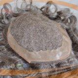 남자 (PPG-l-01518)를 위한 가득 차있는 회색 사람의 모발 시스템 피스 가발