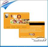 이중 공용영역 1K S50 공백과 Hico 자석 줄무늬 카드