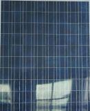 Panneau normal de pile solaire de série de cellules de Twinmax 72