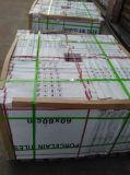 100%年の保証600X600の安い台所無作法なセメントの陶磁器の床タイル