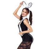 섹시한 여자 성숙한 턱시도 Cosplay 토끼 복장