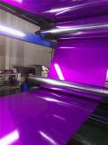 Bobine d'aluminium à revêtement de couleur/ la plaque (PE PVDF)