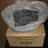 De Gemeenschappelijke Spijkers van het Gebruik van de Bouw van Constraction 1 '' - 6 '' met het Ronde Geruite Hoofd Vlotte Steel Opgepoetste Punt van de Diamant in Guangzhou