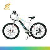 Китай электрический горный велосипед MTB, классические города Pedelc Ebike
