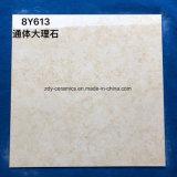 Los materiales de construcción de cuerpo entero natural de mármol, azulejos de porcelana