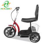 De goedkope Elektrische de wijd Gebruikte Driewieler van de Lading/Driewieler van de Lading van de Markt van Europa