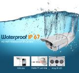 1 Camera van de Koepel van kabeltelevisie van Megapixel 720p IP de Professionele Video Onderwater