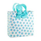 형식 디자인 생일 종이 선물 부대 (YH-PGB027)