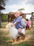 Novo Design balançando recheadas Animal-White balancim de ovinos