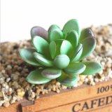 Пластиковый миниатюрный Succulents растений сад домашнего офиса оформлением Искусственные растения