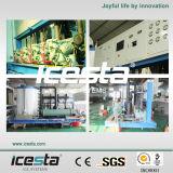 Китай Гуандун Поставщик Icesta Лучшие качества воздушным охлаждением чешуйчатого льда машины
