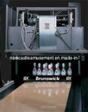 De Apparatuur van het Kegelen van de Apparatuur van de geschiktheid voor de Beste Verkopende Apparatuur van het Kegelen van Brunswick