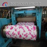 Bobina de aço revestida cor com teste padrão de flor