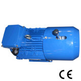 Motore asincrono elettrico a tre fasi di CA di formato di blocco per grafici 63~350 con Ce (Y2-112M-2)