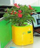 Détection de mouvement Usine numérique à puce pot avec capteur d'humidité du sol