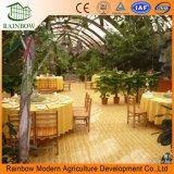Hoja de policarbonato barato Eco restaurante invernadero
