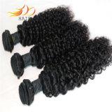 8A最上質のRemyの毛のWeftビルマに毛の編むこと