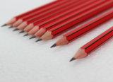 ストライプ塗りおよび消す物の先端の高品質の六角形の鉛筆