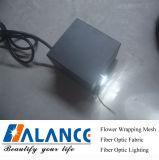 5W LED Light Engine (lls-003)