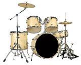 Le tambour a placé le bois de kit de tambour de 5 PCS/(DT2253)