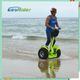 China Supplier do Auto-Balance Lithium Battery Electric Chariot 2 Wheel Electric de pé Scooter