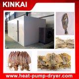 Machine de séchage de poisson professionnelle / Équipement de sécheuse de poisson / Sécheur de poisson et fumeur