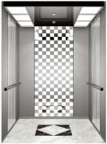 يقود [فّفف] [جرمن] محترفة إلى البيت دار مصعد ([رلس-218])