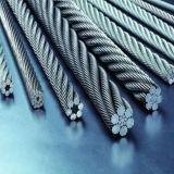 電流を通されるまたはZinc Plated Steel Wire Rope