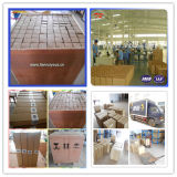 La Chine en acier inoxydable de haute qualité du filtre à huile de treillis métallique frittée