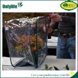 Onlylife PVC Mini agricultura invernadero / jardín de flores / tienda de vegetales