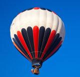 Chargement chaud de ballon à air 550 kilogrammes pour visiter le pays et annoncer