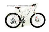 Bicicletas agradáveis da montanha do projeto