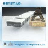 Il magnete permanente del neodimio N45sh di alta qualità di fabbricazione con epossidico ha ricoperto