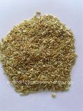 Elevado desempenho do classificador da cor do arroz do CCD com preço de fábrica