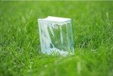 Het lin-Eind van het huis de Decoratieve Mooie Baksteen/het Blok van het Glas (JINBO)