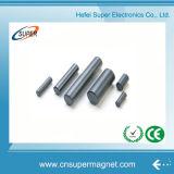 De uitstekende Gesinterde (25*70mm) Kleine Magneten van de Staaf