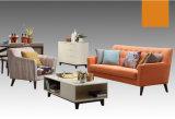 Sofá alaranjado da tela do projeto simples da cor, sofá moderno (M619)