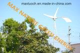 (600W-20kw) Turbinas de vento do Pmg