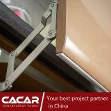 Paco Rabanneの実用的な流行のStovingのニスのラッカー食器棚(CA12-09)