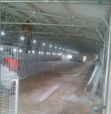 Galinha da construção de aço da luz do conjunto/exploração agrícola rápidas da grelha