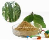 Внимательность кожи Salicin выдержка расшивы белой вербы от 15% до 98%