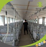 Caisse de cochonnée anti-corrosive de Galvanied d'IMMERSION chaude de matériel de ferme de porc