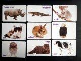 /Full-Farben-Zoll der Tier-grellen Karten (36cards), der Spiel-Karten spielt