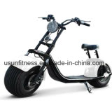 Principe elettrico Harley Motorcycle Scooter dei Cochi della città di vendita calda con Ce