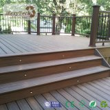 Le WPC Co-Extrusion Anti-Termite bois Composite Decking de plein air