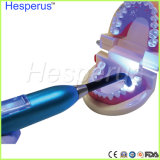 Lámpara dental LED dental que cura la luz 7W Hesperus